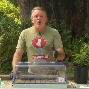 Cannabis Cloning 101: Kevin Jodrey / Green Flower Cannabis Cultivation Program