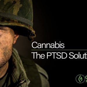 Cannabis: The PTSD Solution - A Green Flower Documentary