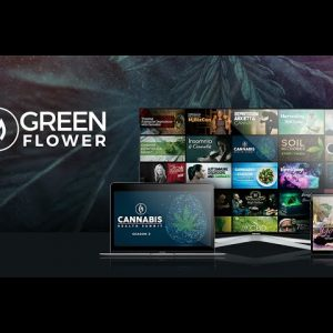 Get Ready to Change the Way You View Cannabis / Green Flower