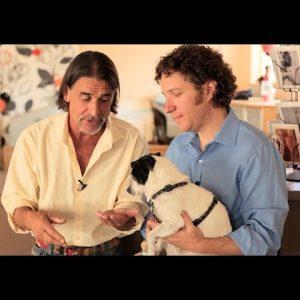 Cannabis for Pets: The Veterinarians Weigh In / Ron Silver, DVM & Gary Richter, DVM / Green Flower