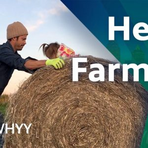 Hemp Farming - You Oughta Know (2020)