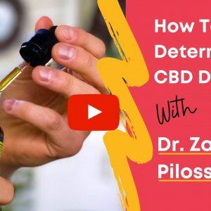 How Do You Determine CBD Dosage for Dogs?
