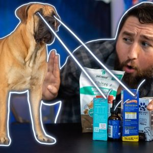 I sent 12 CBD pet products to the lab. Are they real?
