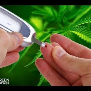 Using Cannabis to Treat Diabetes: Jessica Peters / Mara Gordon / Green Flower