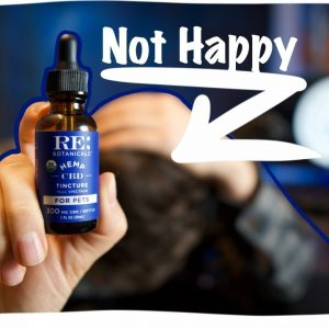 Is RE Botanicals for Pets REAL? See the LAB TESTS and CBD review.