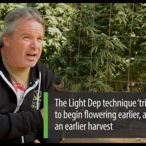 Cannabis Cultivation Using Light Deprivation: Kevin Jodrey - Green Flower Cultivation Course