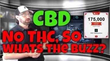 NO THC So  'll pass marijuana test?   CBD Headquarters
