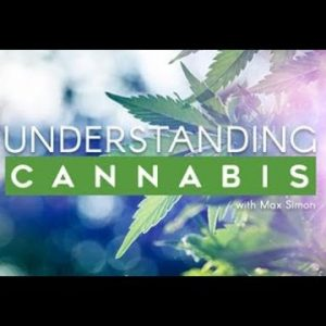 Who Actually Uses Cannabis Today? Understanding Cannabis / Green Flower