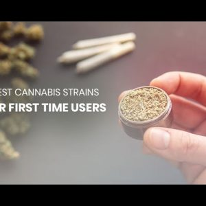 5 Recommended Cannabis Strains for First Time Users