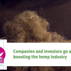 EIHA16, Hempflax celebrates its 25th anniversary and investors boosting the industry