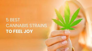Best Cannabis Strains To Feel Joy