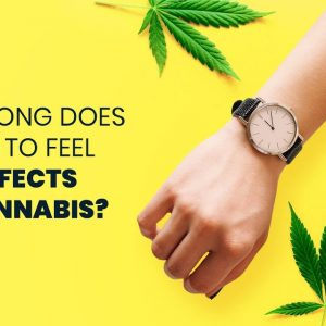 How Long Does It Take To Feel The Effects Of Cannabis?